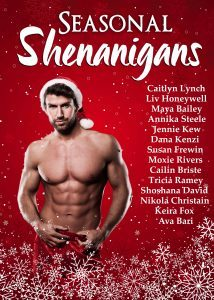 Featured Book: Seasonal Shenanigans by Caitlyn Lynch